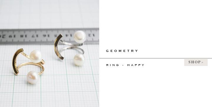 shop_geometry